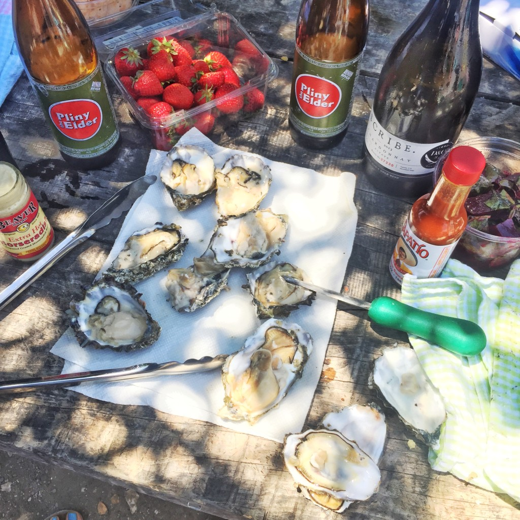 tomales bay oysters