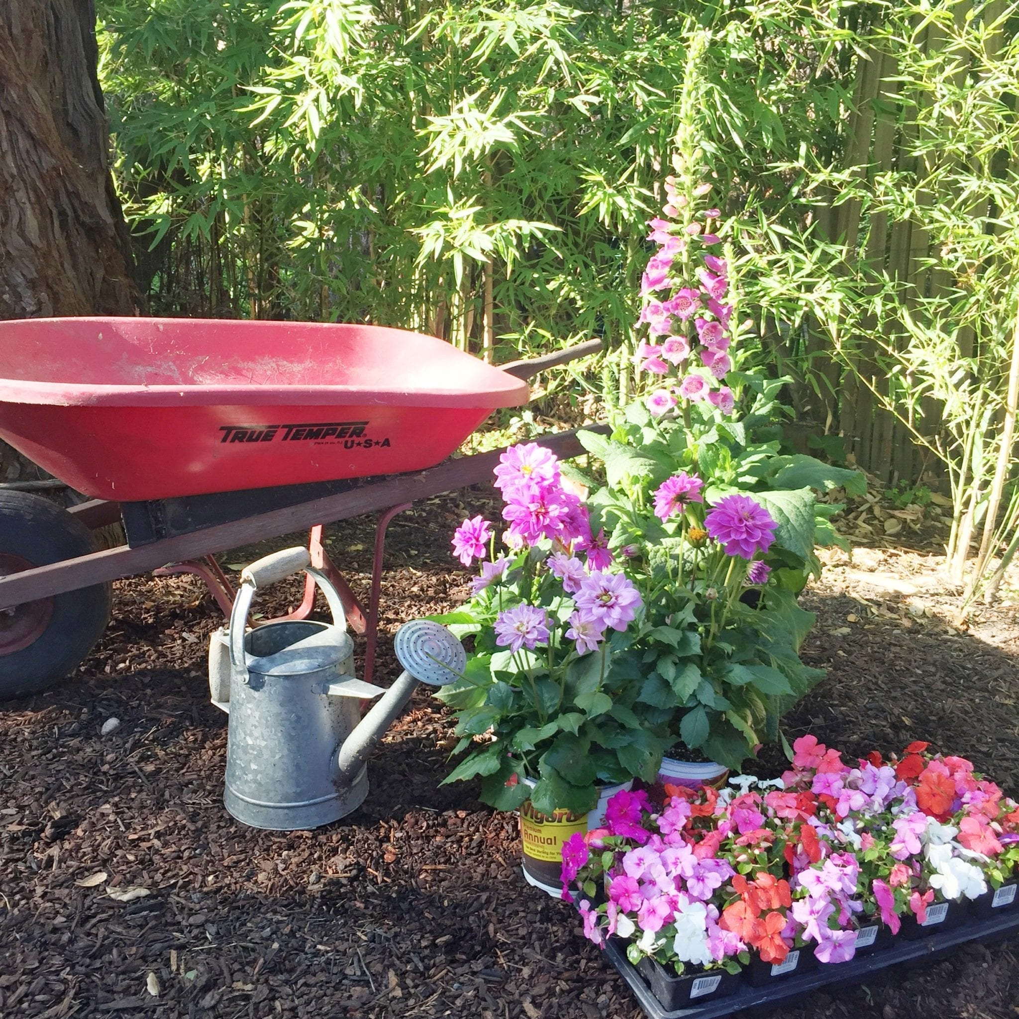 wheelbarrow planter box
