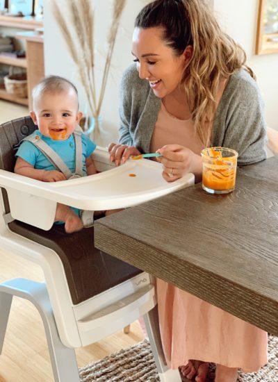 DIY baby food purees